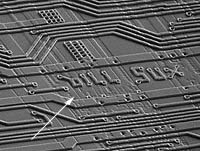 Closeup of Intel chip hoax image